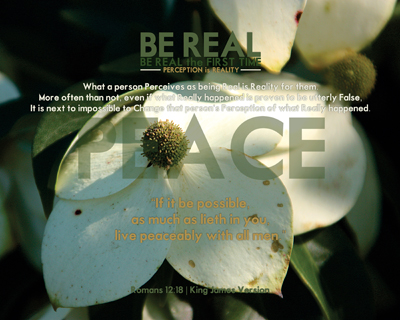 13-PEACE_BeRealTheFirstTime_8x10L_v1_05-Preview