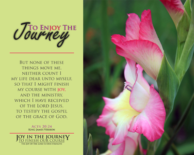 X22287_Acts_20_24_JoyInTheJourney_8x10_v1_00-Preview