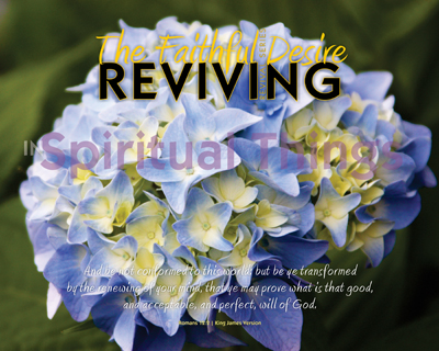10-X17158_SpiritualThings-TheFaithfulDesireRevival_8x10_v1_04-Preview