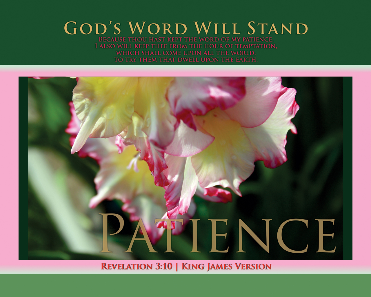 Prints gods word will stand patience altavistaventures Gallery
