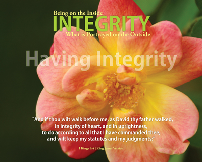 00_Introduction_HavingIntegrity_8x10L_v1_06-Preview
