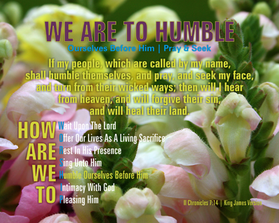 MAIN-05-HUMBLE_HowAreWeToWorship_X7_8x10L_v1_07-Preview
