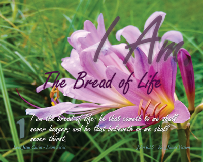 01-TheBreadOfLife_IAmSeries_8x10L_v1_02-Preview