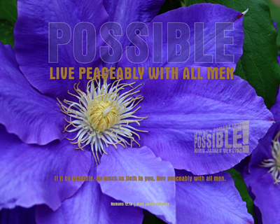 01-Peaceably_IfItBePossible_8x10L_v1_04-Preview