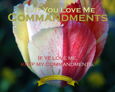 08-Commandments_IfYouLoveMe_8x10L_v1_13-Preview