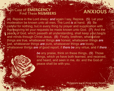 06-Anxious-RED_InCaseOfEmergency_X7_8x10L_v1_02-RGB