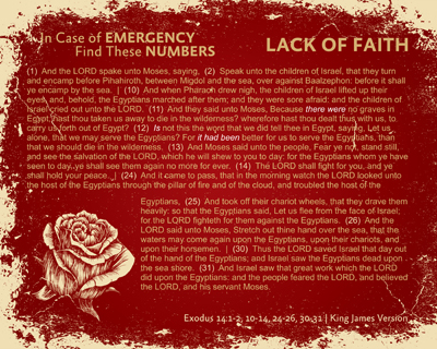 10-LackOfFaith-RED_InCaseOfEmergency_X7_8x10L_v1_02-RGB