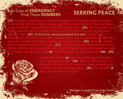 13-SeekingPeace-RED_InCaseOfEmergency_X7_8x10L_v1_02-RGB