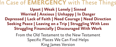 ARTWORK-InCaseOfEmergency_X7_8x10L_v1_01-TheseThings-Header-409p