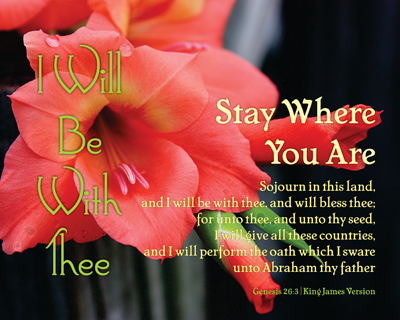 01-StayWhereYouAre_IWillBeWithThee_X7_8x10L_v1_07-Preview