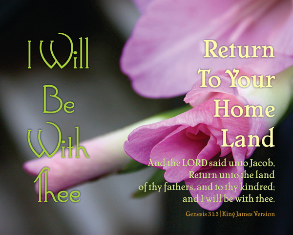 02-ReturnToYourHomeLand_IWillBeWithThee_X7_8x10L_v1_07-600p