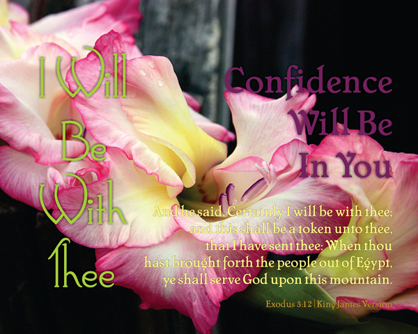 03-ConfidenceWillBeInYou_IWillBeWithThee_X7_8x10L_v1_07-600p