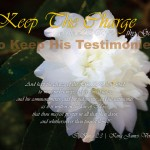 To Keep His Testimonies