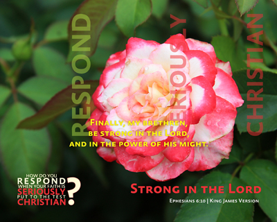 01-StrongInTheLord_RespondSeriouslyChristian_X7_8x10L_v1_02-Preview