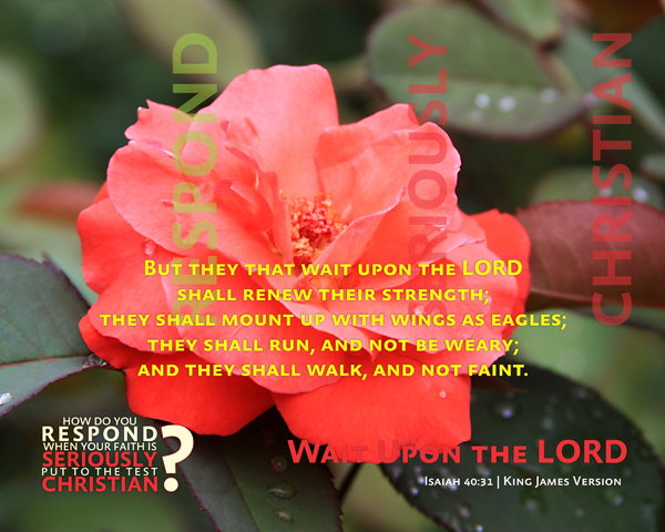 02-WaitUponTheLord_RespondSeriouslyChristian_X7_8x10L_v1_02-600p
