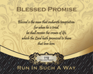 14-BlessedPromise_RunInSuchAWay_X7_8x10L_v1_06-RGB