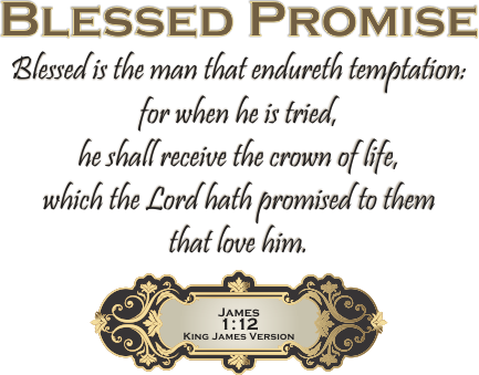 ARTWORK_RunInSuchAWay_X7_8x10L_v1_06-BlessedPromise-Header-433p
