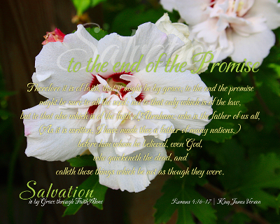 05-Promise_SalvationIsByGraceThroughFaithAlone_X7_8x10L_v1_03-Preview