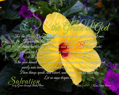 08-Grace_SalvationIsByGraceThroughFaithAlone_X7_8x10L_v1_03-Preview