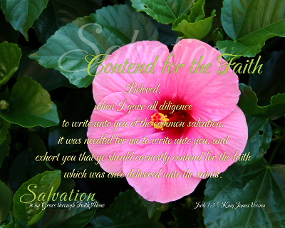 10-ContendFaith_SalvationIsByGraceThroughFaithAlone_X7_8x10L_v1_03-Preview