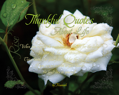 03-Rise_ThankfulQuotesAboutLife_X7_8x10L_v1_02-RGB