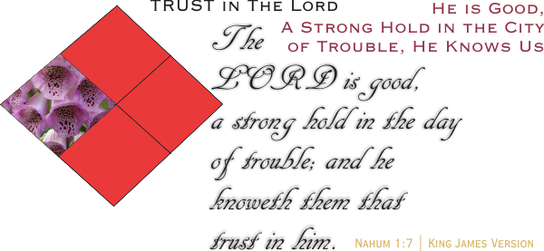 ARTWORK_TrustInTheLord_X7_8x10L_v1_03-Nahum1-7-Header-600p