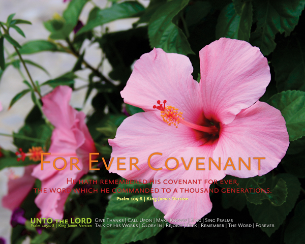 07-ForEverCovenant_UntoTheLORD_X7_8x10L_v1_01-600p