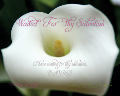 01-WaitedForThySalvation_WaitUponTheLord-8x10L_v1_03-Preview