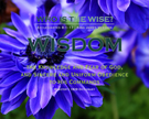 D01-Wisdom_Definitions_WhoIsTheWise_8x10L_v1_04-RGB