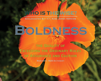 D02-Boldness_Definitions_WhoIsTheWise_8x10L_v1_04-RGB