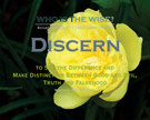 D04-Discern_Definitions_WhoIsTheWise_8x10L_v1_04-RGB