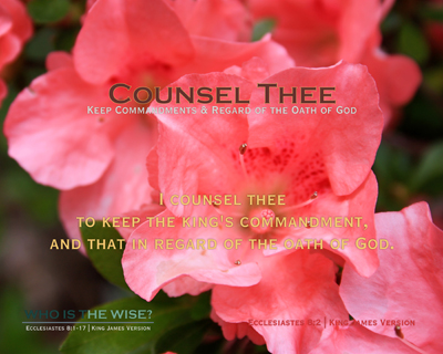 S02-CounselThee_Scripture_WhoIsTheWise_8x10L_v1_04-RGB