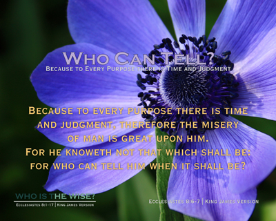 S06-WhoCanTell_Scripture_WhoIsTheWise_8x10L_v1_04-RGB
