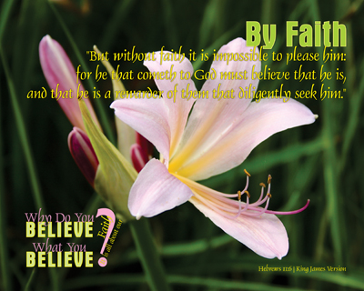 01-ByFaith_WhyDoYouBelieveWhatYouBelieve_8x10L_v1_04-Preview