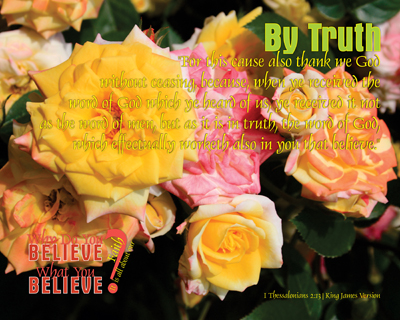 14-ByTruth_WhyDoYouBelieveWhatYouBelieve_8x10L_v1_04-Preview