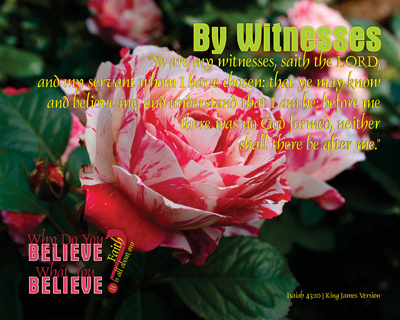 15-ByWitnesses_WhyDoYouBelieveWhatYouBelieve_8x10L_v1_04-Preview