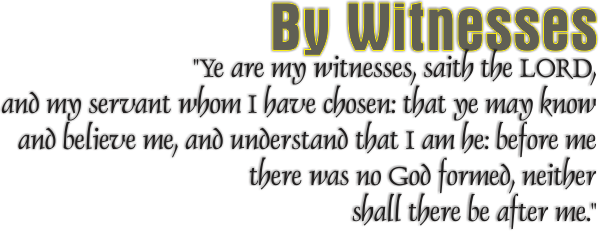 Design_WhyDoYouBelieveWhatYouBelieve_8x10L_v1_04-ByWitnesses-600p