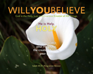01-HOLY_WillYOUBelieve_X7_8x10L_v1_03-135