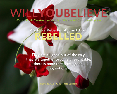 04-REBELLED_WillYOUBelieve_X7_8x10L_v1_03-Preview