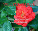 08-DIED_WillYOUBelieve_X7_8x10L_v1_03-135