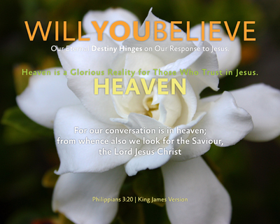 13-HEAVEN_WillYOUBelieve_X7_8x10L_v1_03-Preview