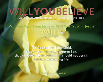 14-WILL_WillYOUBelieve_X7_8x10L_v1_03-Preview